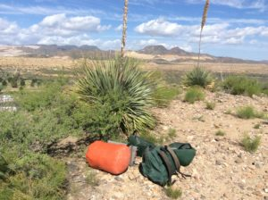 """""""The Portage"""". The yuccas I think are sotols, a plant I more associate with the Chijuajuan Desert."""